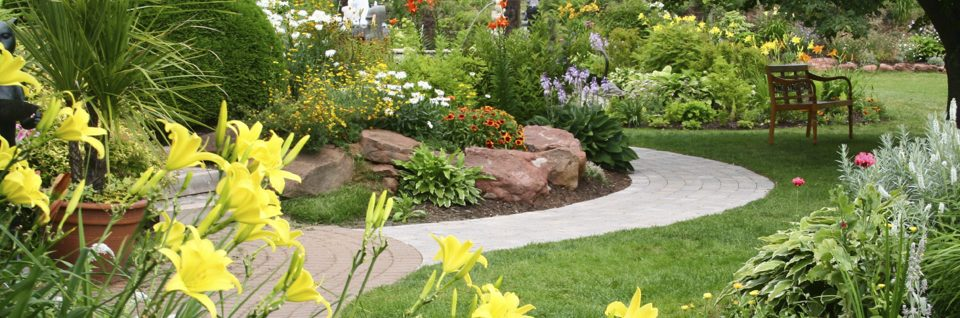 landscape management services image